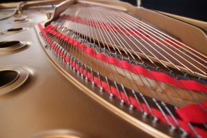 piano strings inside the piano