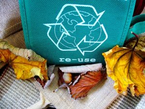 Bag among the leaves with words re-use written on it.