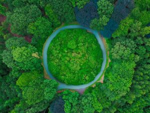 The circle lake in the woods captured from above.