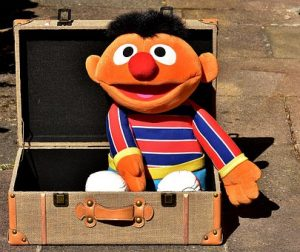 a toy from Sesame Street, whichi is one of the msot popular Manhattan-filmed TV shows.