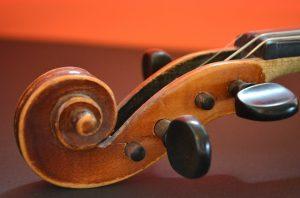 A violin headstock and tuning pins.