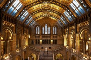 Picture of the interior pf the Natural History Museum