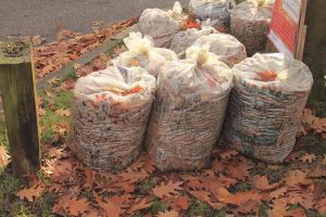 Handle a short notice move like a pro with clear garbage bags, in this picture they are filled with autumn leaves