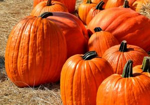 -pumpkins