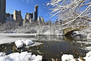 Picture of Central Park covered in snow