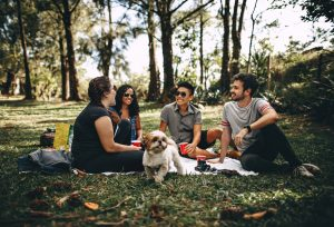 a group of friends in park on a picnic