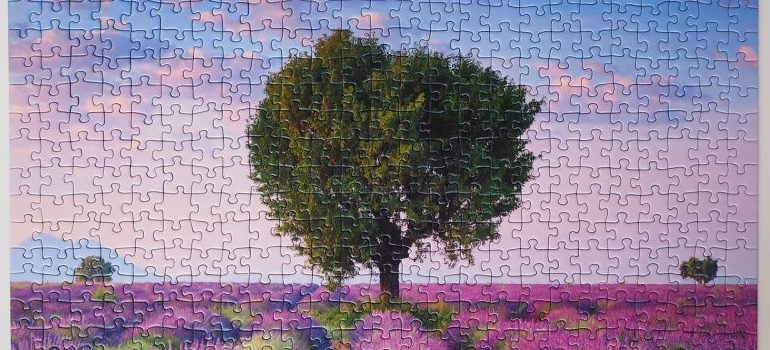 Solved puzzle - moving companies Victory Gardens
